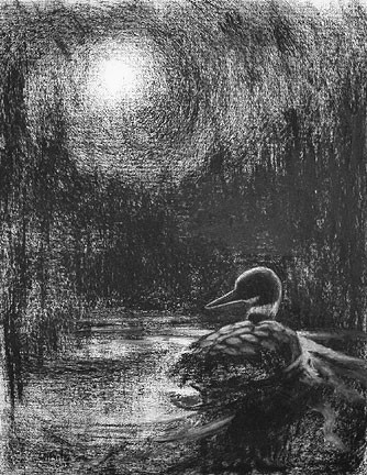 Moonlight Loon Light, charcoal on paper